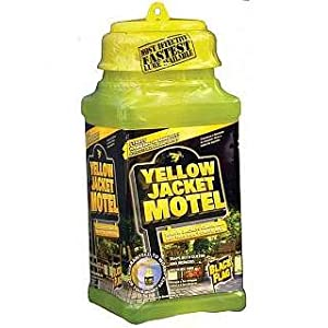 Amazon.com: Black Flag Yellow Jackets Motels ~ 4-Pack: Health