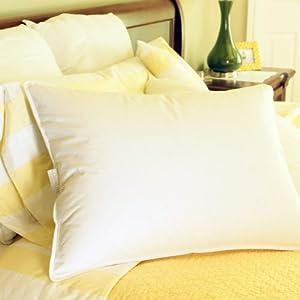 Amazon Com Luxury Hotel Style 50 50 Goose Down And Goose