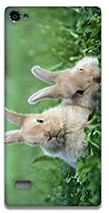 The Racoon Grip Rabbits hard plastic printed back case / cover for Lenovo Vibe X2