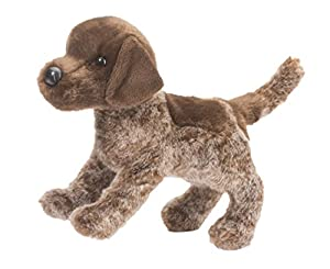 German Shorthair Point...