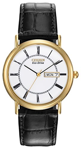 citizen-eco-drive-gents-strap-watch-solar-powered