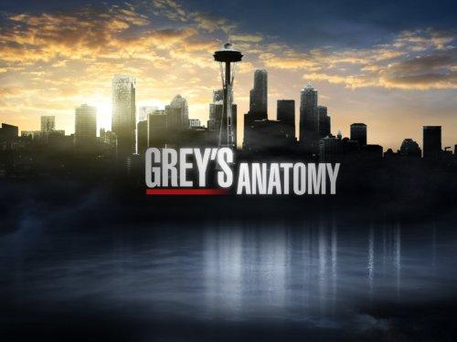 Grey's Anatomy. 41Cns0ldtPL._SX500_
