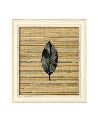 Star Creations Magnolia Leaf on Bamboo Sheet Shadowbox Art