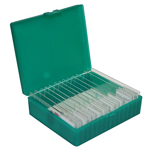 Walter-Products-B17111-Prepared-Slide-Set-MicrobiologyGenetics-Pack-of-5
