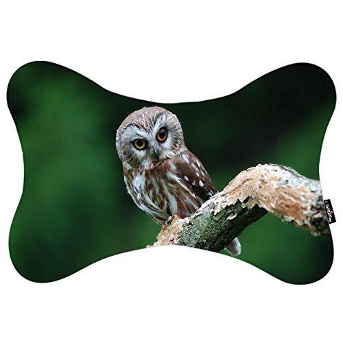 i FaMuRay Auto Cuscino da Viaggio Animals Birds Eyes Face Feathers Owl Theme
