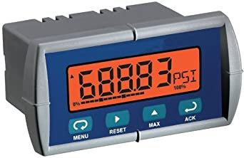 Flowline LI25-1001 DataLoop General Purpose Level Indicator with LCD Display
