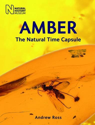 Amber: The Natural Time Capsule
