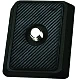 PH-07 Quick Release Plate for BH-001-M Ballheads