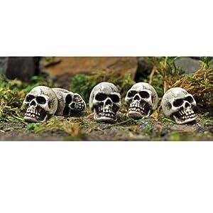 Set of 5 Fairy Garden Skulls Faerie Halloween