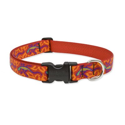 Lupine 1 Inch Go Go Gecko Adjustable Dog Collar