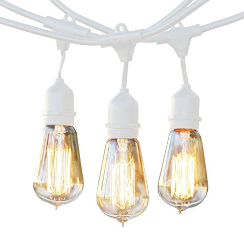 BrightechTM - Ambience Pro Vintage Edition Outdoor Commercial String Lights with Nostalgic Edison Bulbs - 48 Feet String Light with 15 Heavy Duty Molded Rubber Hanging Light Sockets - Create a Unique Retro Look and Feel - UL Listed for Indoor and Outdoor Use - White Wire (String Lights Fruit compare prices)