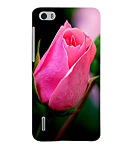 Fuson Premium Printed Hard Plastic Back Case Cover for Huawei Honor 6
