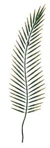 Gardman 111 x 29cm Tropical Palm Leaf Wall Art by Gardman Limited