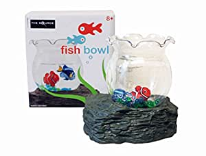 Magnetic moving fish in bowl with artificial for Fish bowl amazon