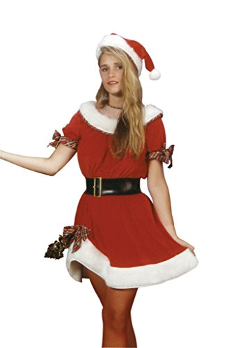 Rubies Womens Ms. Santa Red Sexy Theme Christmas Party Fancy Halloween Costume