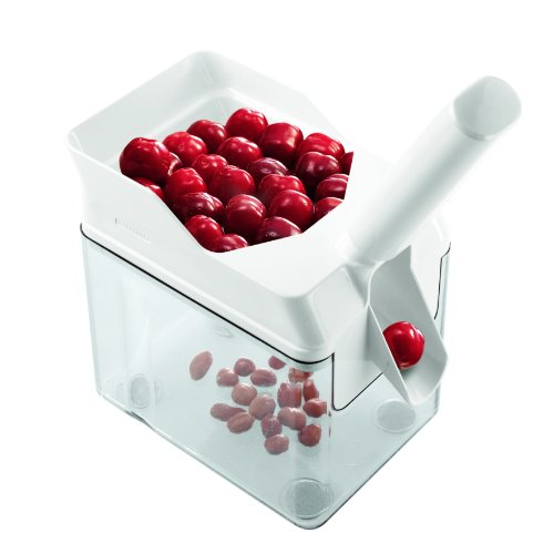 Cherrymat Cherrystone Remover