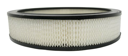 ACDelco A212CW Professional Air Filter