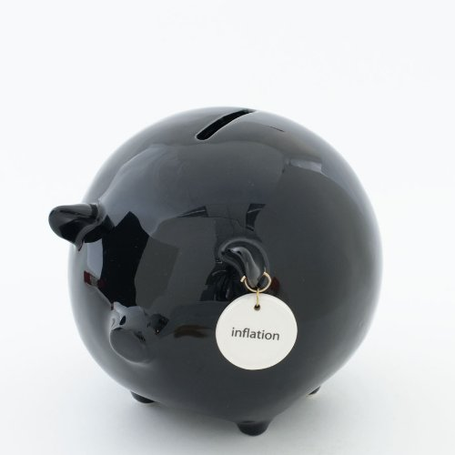 Money Talks Piggy Bank - Deluxe - Inflation