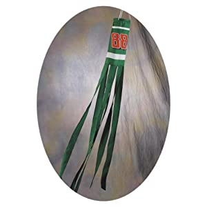 NASCAR Dale Jr. #88 Amp Wind Sock by BSI
