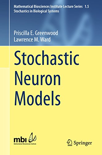 Stochastic Neuron Models (Mathematical Biosciences Institute Lecture Series) (Neurons Model compare prices)