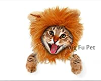 Lion Mane Dog and Cat Costume-Turn Your Cat or Small Dog Into Golden King