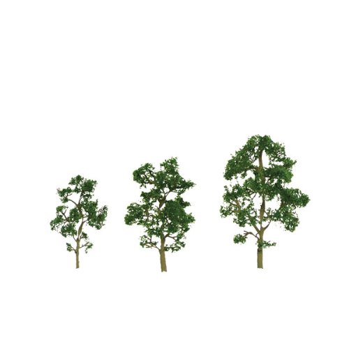 JTT Scenery Products Premium Series: Maple, 1-2""