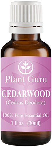 Cedarwood (Himalayan) Essential Oil. 30 ml (1 oz). 100% Pure, Undiluted, Therapeutic Grade.
