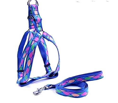 Best 4 Pets Dog Harness and Leash Blue Pretty Pattern Medium Size (Medium Size Harness compare prices)