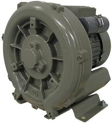 APPL- DG200-11TS Regenerative Blower - .5 Kw, 0.7 Hp, 1/60/115-230V