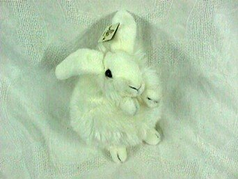 White Baby Bunny front-1052183