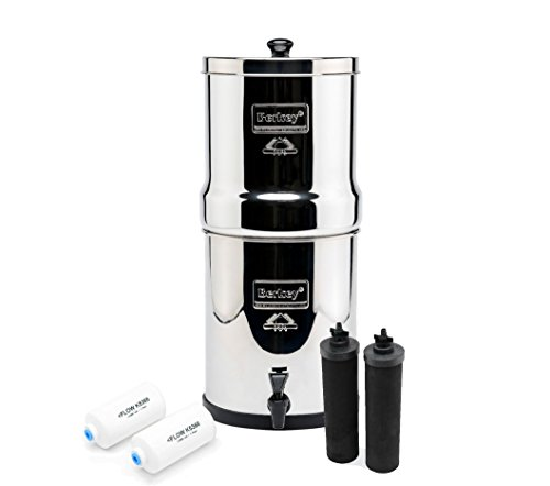 Royal Berkey with 2 Black Filters and 2 PF-2 Fluoride Filters