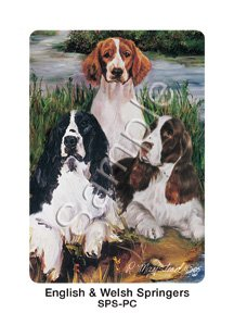 Best Friends Playing Cards, by Ruth Maystead - Springer Spaniels (English and Welsh) - 1