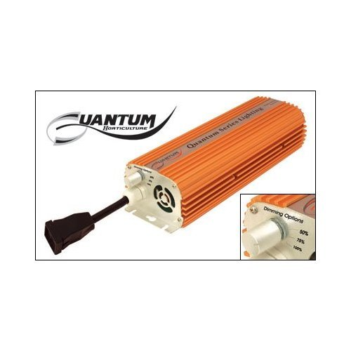 Quantum 600 Watt Dimmable Electronic Ballast at Amazon.com