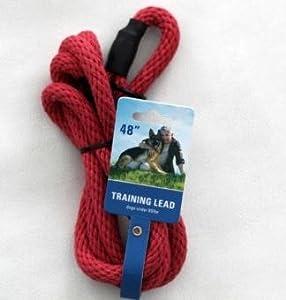 Illusion Dog Training Collar Amazon