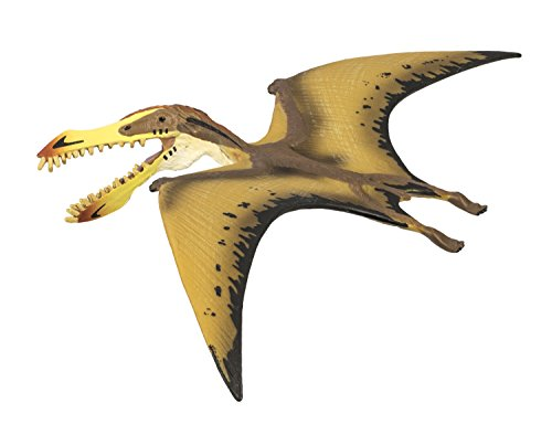 Safari Ltd  Wild Safari Pterosaur
