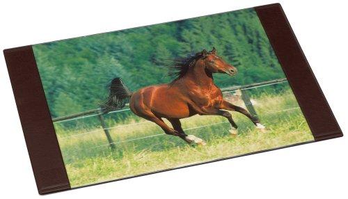 Imagen principal de Idena 350107  - Secante caballo