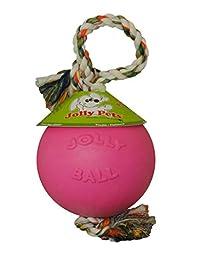 Jolly Pets 6-Inch Romp-n-Roll, Pink