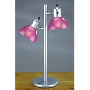 Clearance floor lamps pink giraffefebruary 2009 for Fuschia pink floor lamp