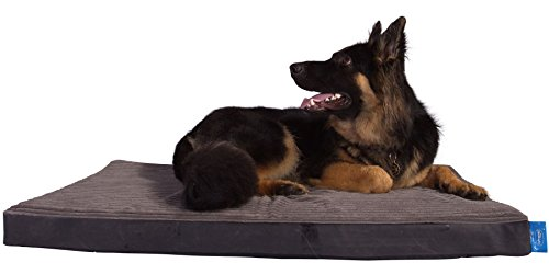 Silentnight Extremely Grade Reminiscence Foam Canine