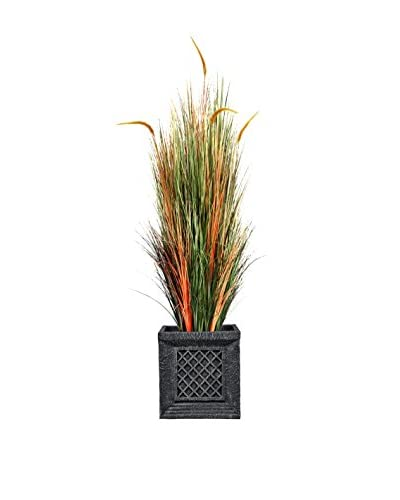 Laura Ashley 66 Onion Grass with Cattail in Planter