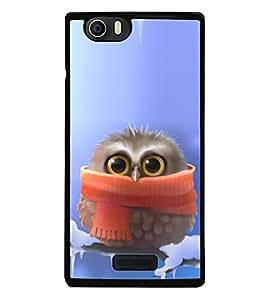 Cute Baby Owl 2D Hard Polycarbonate Designer Back Case Cover for Micromax Canvas Nitro 2 E311