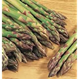 Pack of 8 Asparagus Roots - Variety 