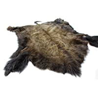 Impressive and Grand Buffalo Hide