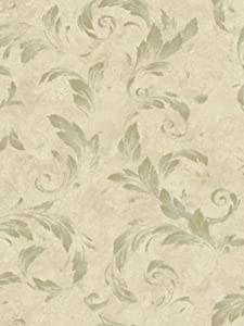 Wallpaper Warner by Brewster Artistic Illusions Acanthus Brushstroke AL13715