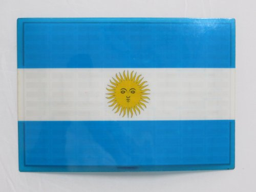 Argentina Arg Flag Flashing Sound Activated Dj Light Up Led Decal Sticker Patch Panel