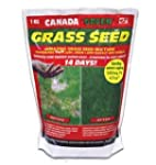Canada Green Grass Seed 1KG. Coverage...