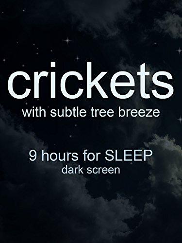 Crickets 9 hour sleep