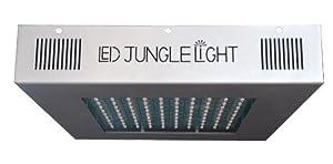 LED Jungle Light M600 Crimson