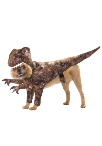 Animal-Planet-PET20109-Raptor-Dog-Costume