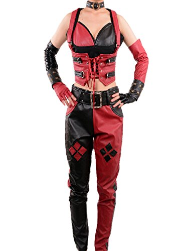 Batman Arkham City Secret Wishes Adult Harley Quinn Cosplay Costume